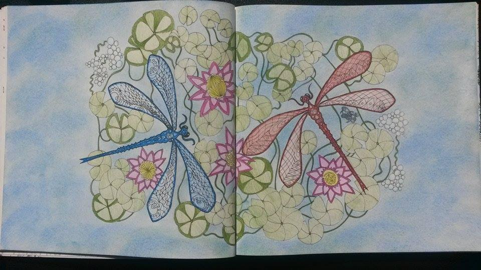 Lucy Fyles' dragonfly
