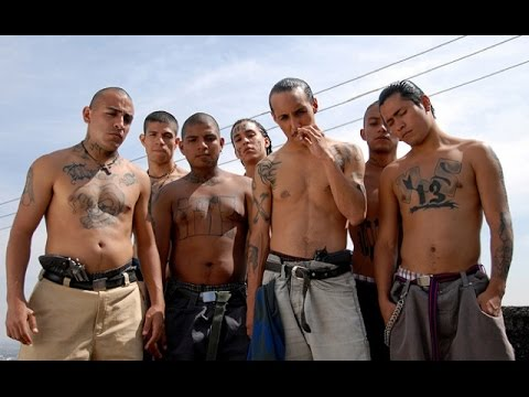 Gang culture has spread far and wide across Mexico and in to the States